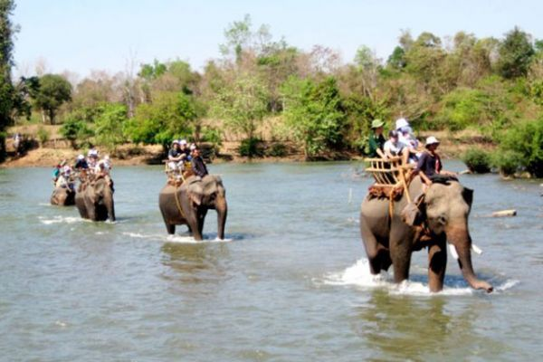 Trải nghiệm cưỡi voi thú vị