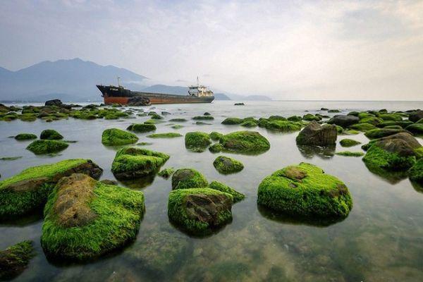 Những tảng đá phủ rêu xanh mướt ở Rạn Nam Ô